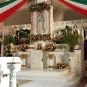 VIRGEN DE GUADALUPE 2018 photo album thumbnail 5
